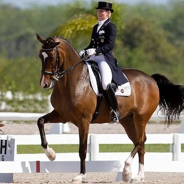 Niagara Equissage is used by Susie Dutta on her horse